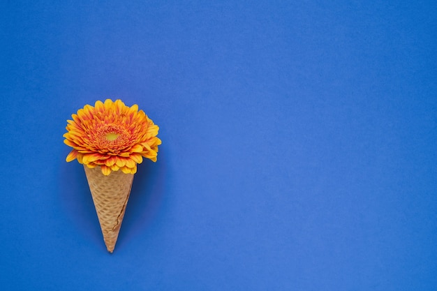 Конус мороженого с желтым цветком герберы на синем фоне. копирование пространства, вид сверху.