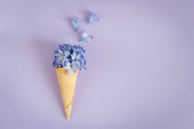 Ice cream horn or cone with purple hyacinth on a purple background.