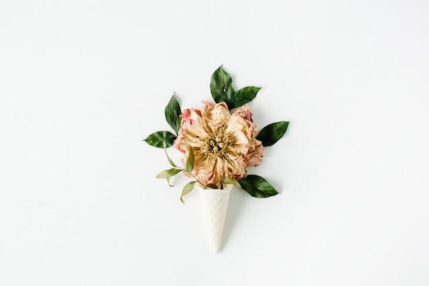白地に乾燥ベージュの牡丹の花とアイスクリームワッフルコーン