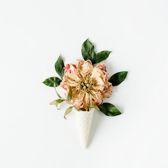 Ice cream waffle cone with dried beige peony flower on white