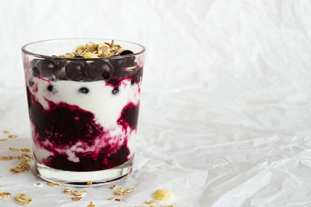 Ice cream with berries and muesli. free space for text