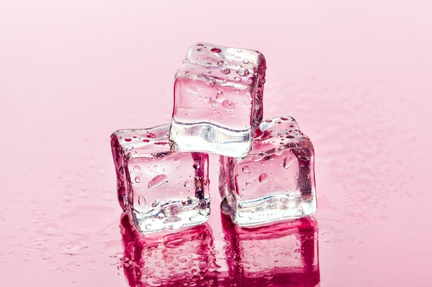 Ice cubes on pink
