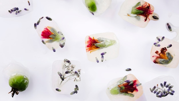 Ice cubes with flowers and seeds