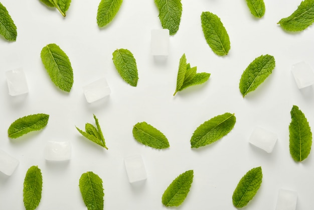 Ice cubes with mint leaves flat lay, isolated on white.