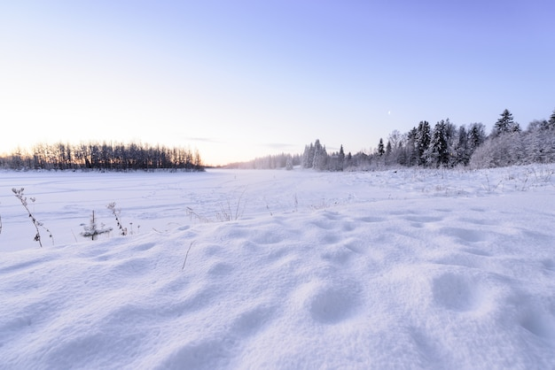 The ice lake and forest has covered with heavy snow and nice blue sky in winter season at holiday village kuukiuru, finland.