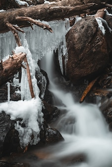 Ice stalactites on trunks in a waterfall