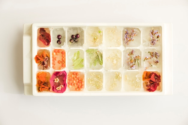Ice tray with assortment of plants