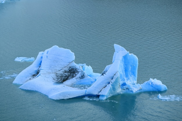 Iceberg floating on lake argentino