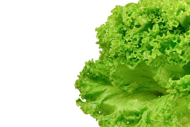 Iceberg lettuce background