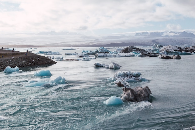 Icebergs in iceland's glacial lagoon at sunset