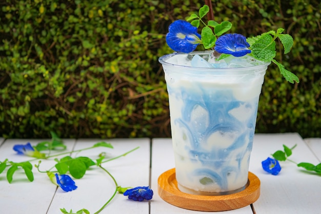 Iced blue pea milk or iced butterfly pea latte with milk
