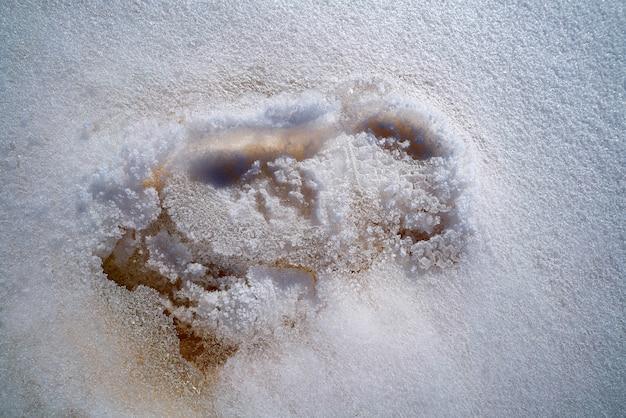 Iced footprint on white snow