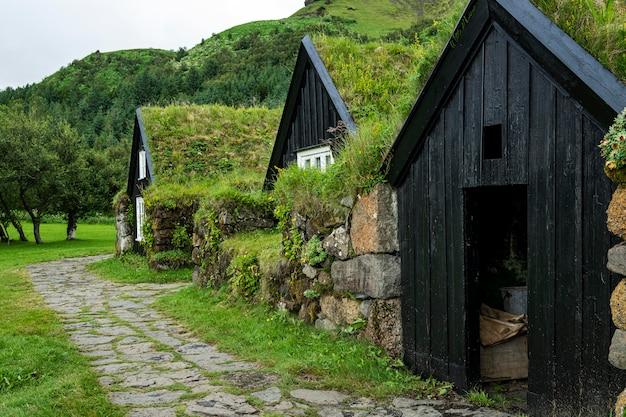 Исландский пейзаж красивых домов