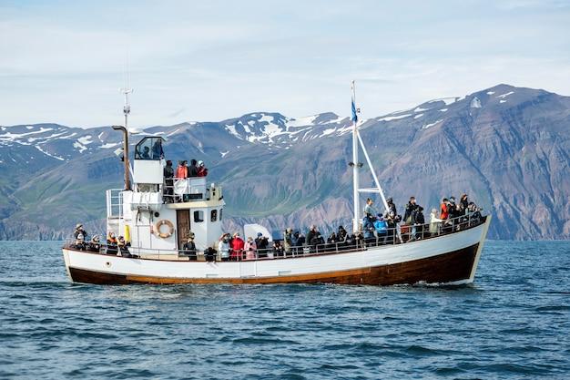 Исландский пейзаж красивых водных пейзажей