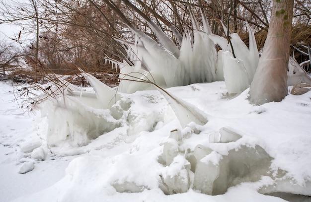 해안에 있는 나무의 고드름과 얼어붙은 나뭇가지. 아름 다운 겨울 장면입니다.