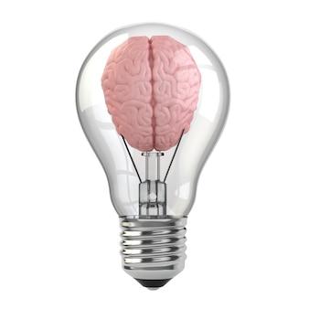 아이디어 개념입니다. 전구에 두뇌입니다. 3d