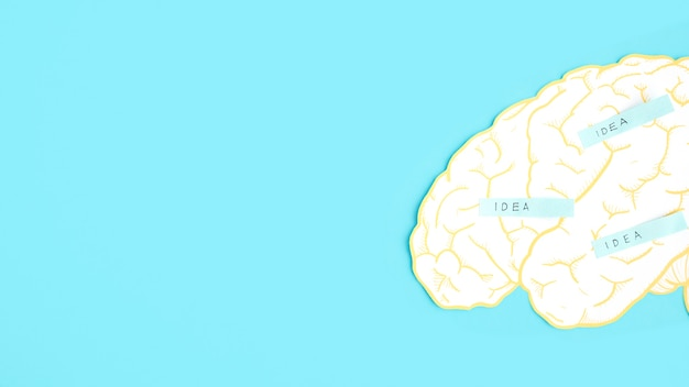 Idea label on paper cutout brain over the blue background