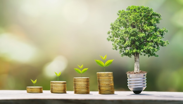 Idea of money growing step with tree