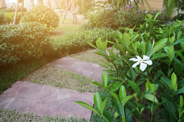 Идея дизайна камня и цементной плитки для мощения дорожек в саду