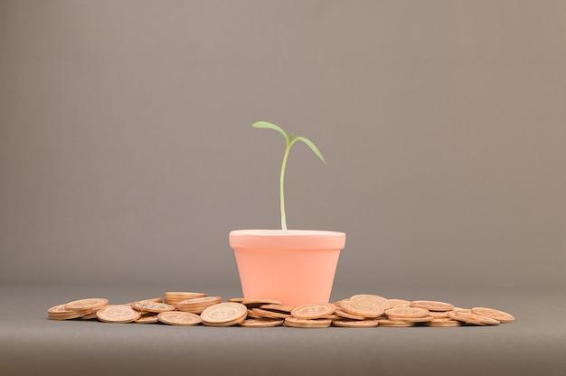 Идеи для роста доходов, инвестирования, накопления, экономии