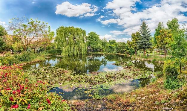 Идиллический небольшой пруд в лесу с красивыми отражениями