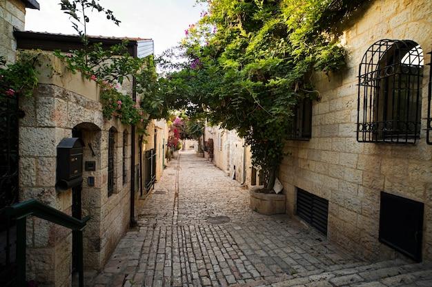 Идиллический пустой переулок какого-то старого города с альпинистами и цветами, свисающими с каменных стен уютных домов. узкий проход между каменными домами какого-то городка старого света. живописный вид.