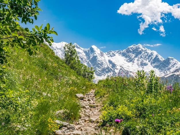 Идиллический пейзаж с голубым небом, тропа среди зеленых лугов и заснеженная вершина горы. сванетский регион, грузия