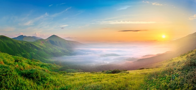 Idyllic landscape with green grass covered morning mountains