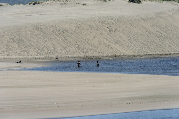 Idyllic sandy beach with people swimming in the water