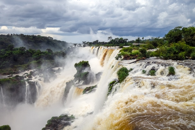 Iguazu falls national park. tropical waterfalls and rainforest landscape
