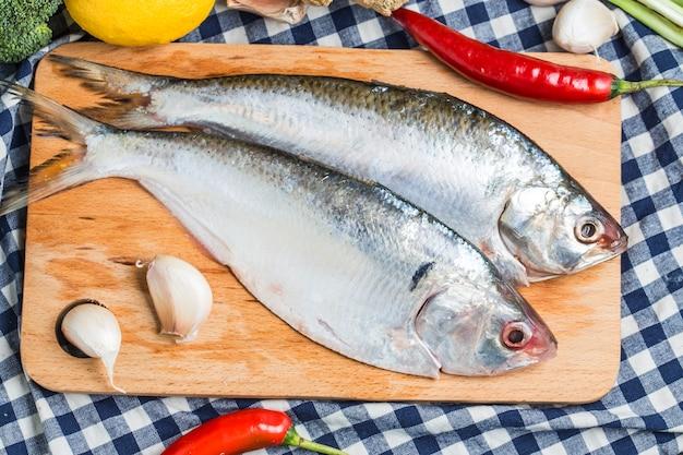 Ilish fish of southeast asia