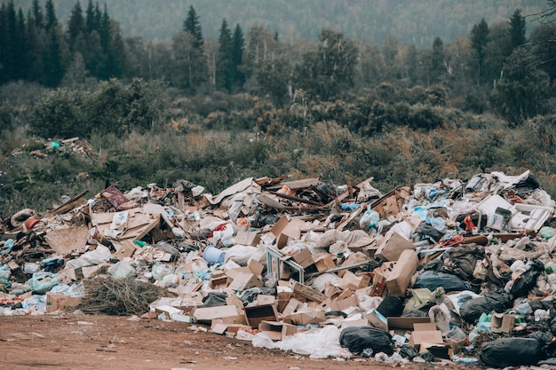 Illegal landfill in the middle of the forest and field. mountains of garbage