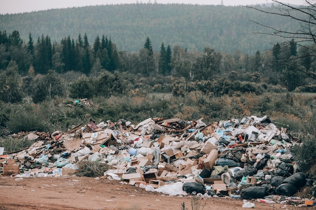 Illegal landfill in the middle of the forest and field.