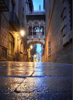 Illuminated medieval street carrer del bisbe with bridge of sigh