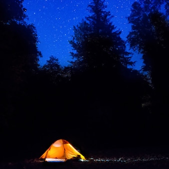 Illuminated orange tent at night in the forest under dark blue sky with many stars