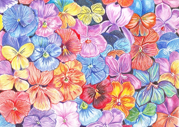 Illustration drawn with watercolor pencils flowers of violets