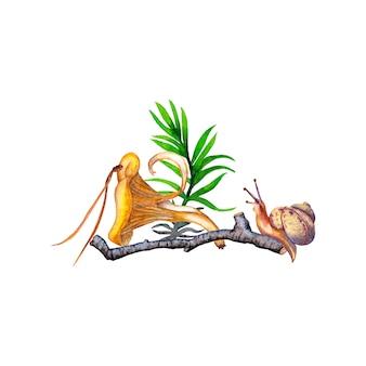 ジロル茸、草、小枝、松葉、カタツムリのイラスト。水彩画。