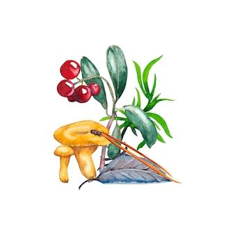 アンズタケきのこ、カウベリー、草、葉、松葉のイラスト。水彩画。