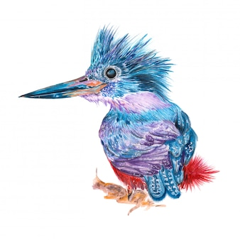 Illustration of a painted watercolor bird