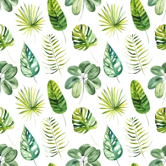 Illustration seamless pattern drawn by watercolor exotic tropical green leaves