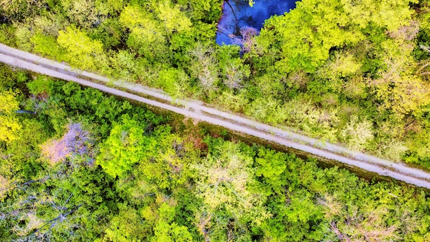Image of aerial looking down at vibrant green forest with simple gravel road