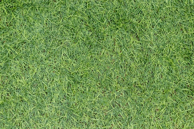 Image of artificial green grass