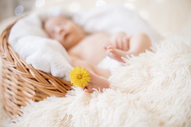 Image of a dandelion flower on the leg of a newborn baby
