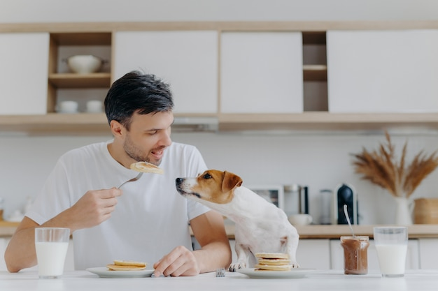 Image of handsome of man in casual white t shirt, eats tasty pancakes, doesnt share with dog, pose against kitchen interior, have fun, drinks milk from glass. breakfast time concept. sweet dessert