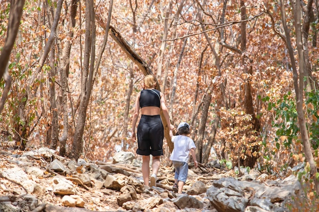 The image behind mother shakes hands with son walking on a rock walkway background dry tree at phraya nakhon cave national park , prachuap khiri khan , thailand.