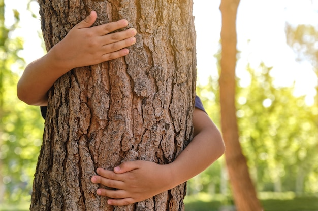 뒤에서 나무 줄기를 껴안고 있는 아이의 팔 이미지