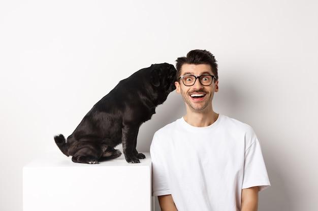 飼い主の耳にささやくかわいい黒いパグ犬、白い背景の上に立って驚いて笑っている男をイメージ。
