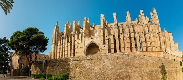 パルマデマヨルカスペインの有名な大聖堂laseuの画像
