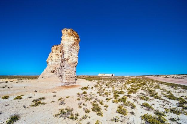 사막의 흙길과 흰 바위 기둥이 있는 평평한 사막의 모래와 노란 꽃의 이미지
