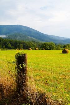 건초 더미의 이미지는 전경에 울타리 기둥이 있는 녹색 들판과 배경에 나무가 있는 큰 회색 산입니다.